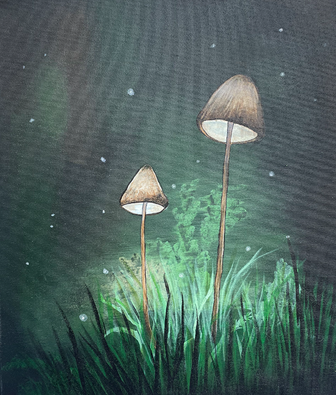 Midnight Mushrooms