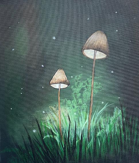 ''Midnite Mushrooms