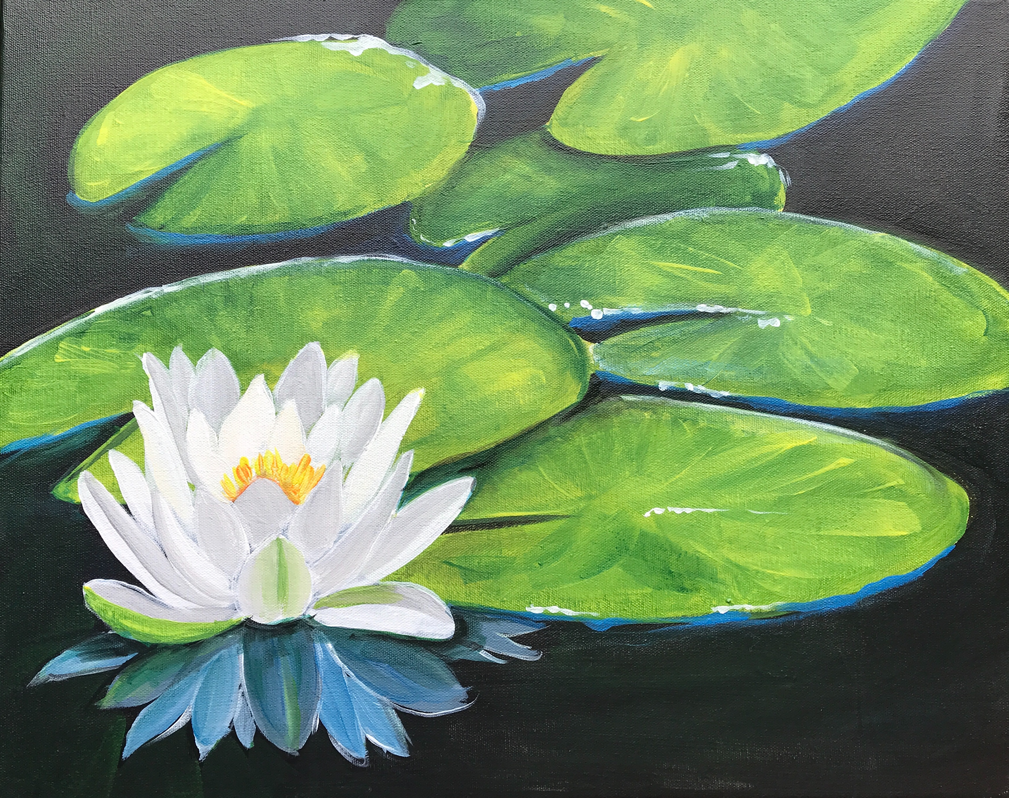 'White Water Lilly'