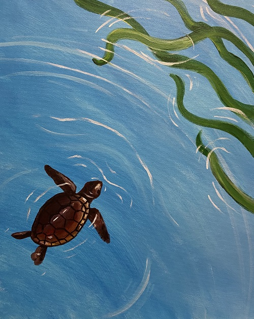 'Little Turtle' - Live Online Event