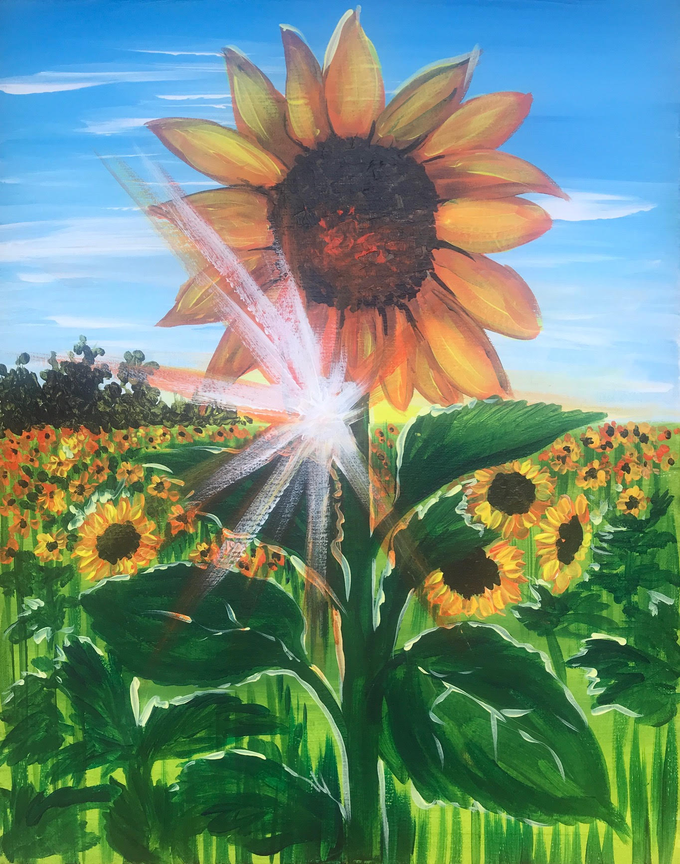 Sunrise Sunflower