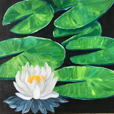 'White Water Lily'