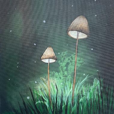 ''Midnite Mushrooms